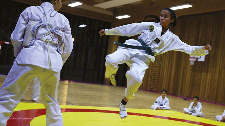 Photo de l'activité sportive Taekwondo à l'US Ivry
