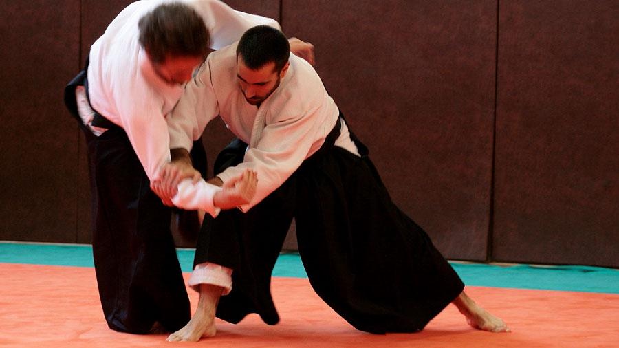 Photo de l'activité sportive Aïkibudo à l'US Ivry